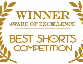 Patch wins Awards of Excellence at Best Shorts Festival in US